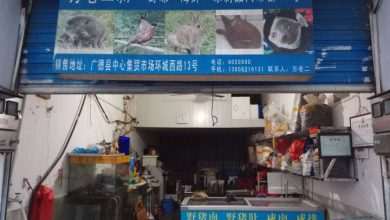 Photo of China imposes temporary ban on wildlife trade amid coronavirus outbreak