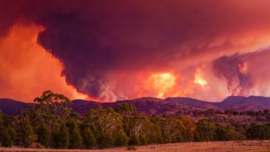 Photo of Australia fires: State of emergency declared for Canberra region
