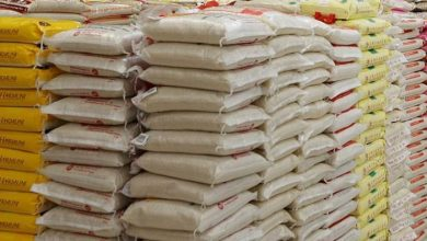 Photo of Nigeria to begin rice export in 2 years – Minister