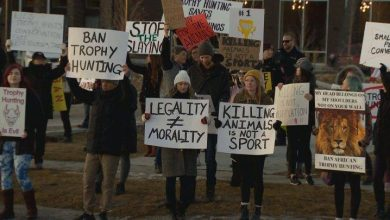 Photo of Calgary animal rights activists protest elephant hunt