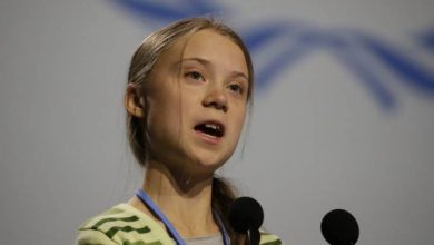 Photo of Greta Thunberg nominated for Nobel Peace Prize