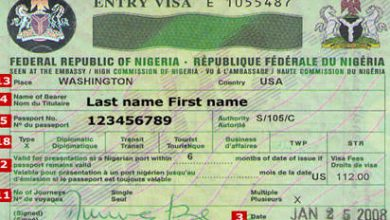 Photo of FG calls on U.S. to reverse visa restrictions on Nigeria