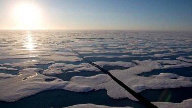 Photo of Canada likely to support move to ban heavy fuel use in Arctic