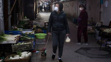 Photo of Animal lovers in virus-stricken Wuhan are breaking into homes to save pets