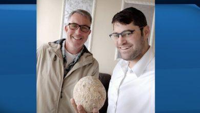 Photo of Fearing coronavirus 'end of the world,' thief returns stolen ancient artifact