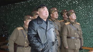 Photo of South Korea looking into reports of North Korean leader Kim's health: official