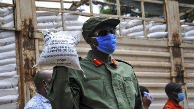 Photo of Coronavirus lockdowns threaten Africa's already-vulnerable food supply
