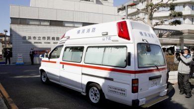 Photo of Coronavirus: Japan's medical system on verge of collapse, doctors say