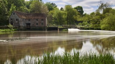 Photo of Ancient mill resumes flour production to help ease shortage caused by COVID-19