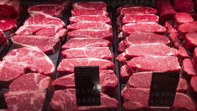 Photo of 'A good idea': Some Americans turn to hunting amid meat shortages during pandemic