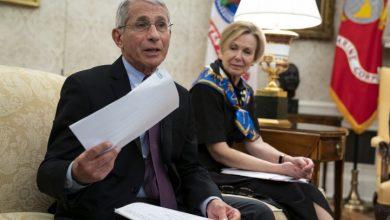 Photo of Coronavirus: White House blocks Fauci from testifying on U.S. response
