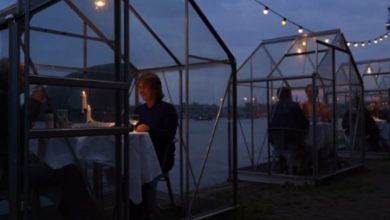 Photo of Dine and distance: Dutch 'greenhouse' restaurants allow social-distance dining