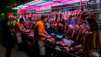 Photo of Wuhan bans eating wild animals in wake of coronavirus pandemic