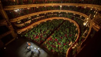 Photo of Barcelona opera house reopens to an audience of plants