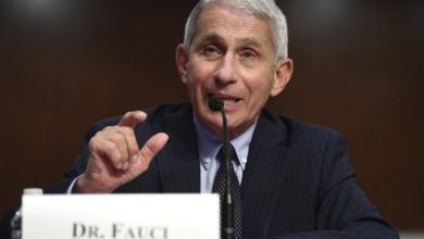 Photo of Coronavirus: Fauci, CDC chief raise concerns about full U.S. flights amid COVID-19