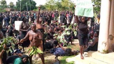 Photo of ASCAB warns on costs of Kaduna killings, blames FG